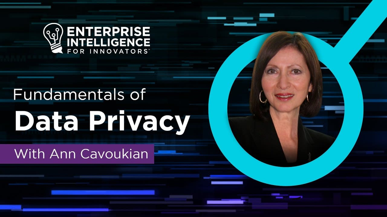 Ann Cavoukian and the Fundamentals of Data Privacy